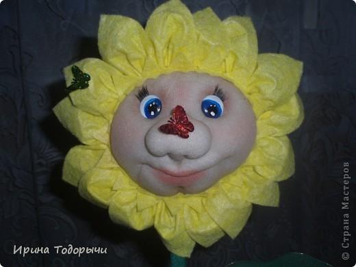 Вот решила подруге на ДР сшить цветочек.Она очень любит комнатные цветы(ну чем не комнатный?))))) ).Пусть стоит и радует ее, и вспоминает меня. фото 5