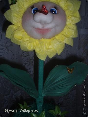 Вот решила подруге на ДР сшить цветочек.Она очень любит комнатные цветы(ну чем не комнатный?))))) ).Пусть стоит и радует ее, и вспоминает меня. фото 2