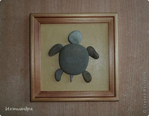 Декор предметов Роспись Каменная черепашка Клей Краска Материал природный фото 7