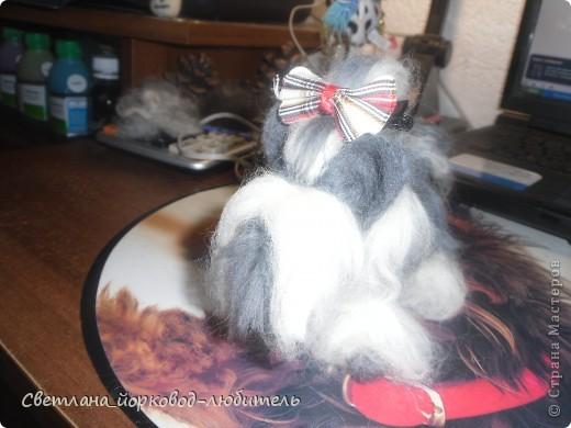 Стоечка моего биверёнка) фото 2