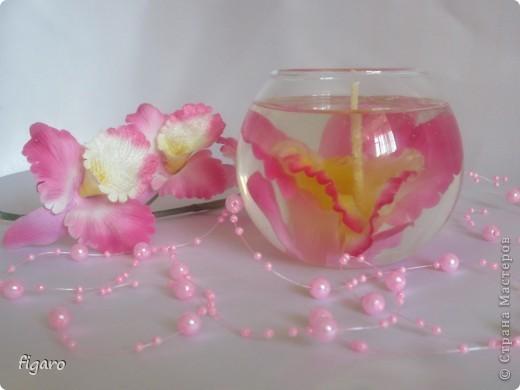 Благородная орхидея! фото 1