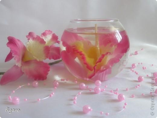 Благородная орхидея! фото 2