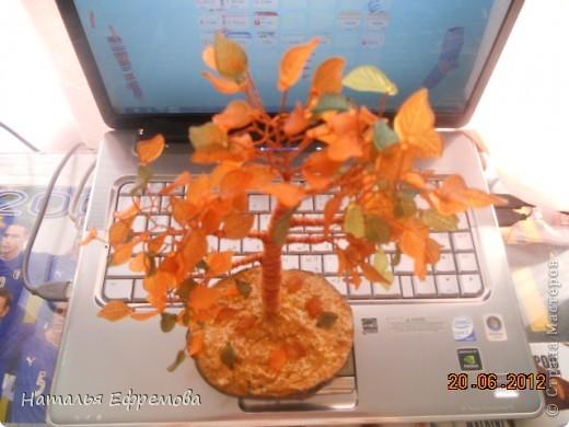 Осень фото 3