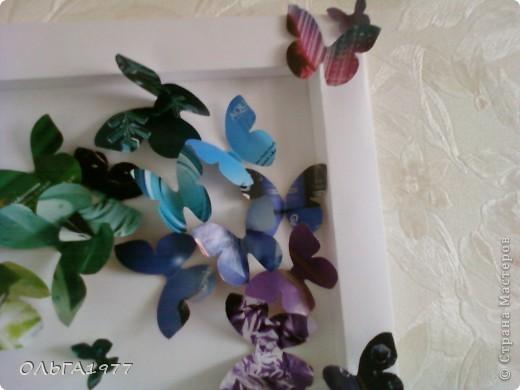 Попросили поделку в детский сад (сыну), а я давно хотела сделать что-нибудь с бабочками, ну вот и пригодились каталоги Орифлейм. фото 2