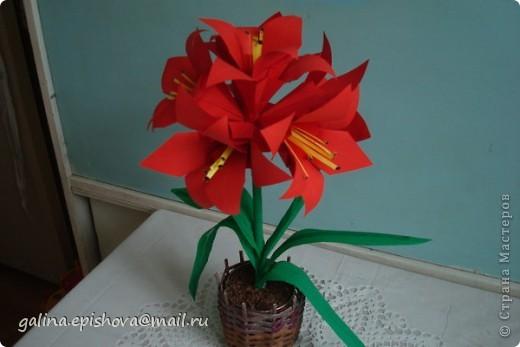 Аммаралис - цветок оригами фото 3