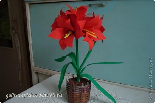 Аммаралис - цветок оригами фото 1