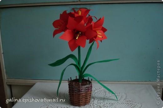 Аммаралис - цветок оригами фото 2