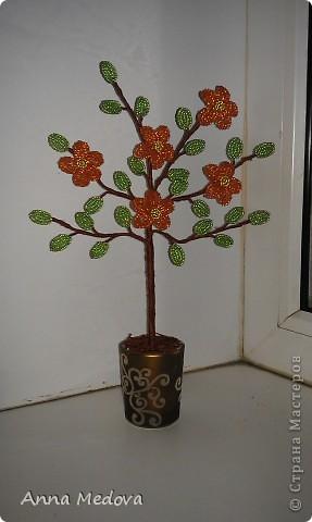 Дерево цветочное фото 2
