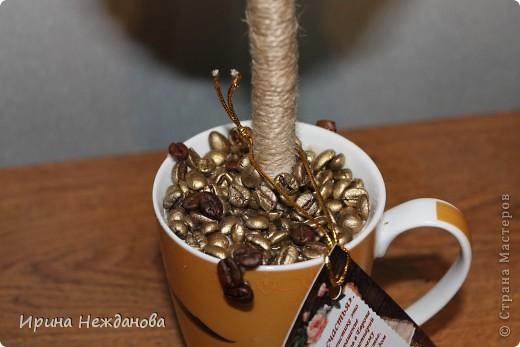 Самый первый экземпляр... Топиарий кофейный с палочками корицы. Еще потом лентоки атласные на ствол около кроны завязала - коричневую и золотистую, но не сфотографировала к сожалению... фото 2