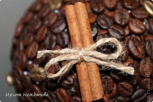 Самый первый экземпляр... Топиарий кофейный с палочками корицы. Еще потом лентоки атласные на ствол около кроны завязала - коричневую и золотистую, но не сфотографировала к сожалению... фото 4