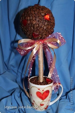 Самый первый экземпляр... Топиарий кофейный с палочками корицы. Еще потом лентоки атласные на ствол около кроны завязала - коричневую и золотистую, но не сфотографировала к сожалению... фото 11