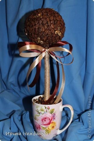 Самый первый экземпляр... Топиарий кофейный с палочками корицы. Еще потом лентоки атласные на ствол около кроны завязала - коричневую и золотистую, но не сфотографировала к сожалению... фото 17
