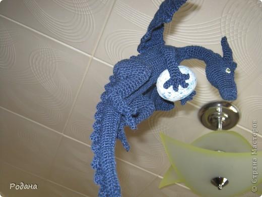 Хоть Новый год и прошел, но год дракона еще никто не отменял, поэтому связался один дракончик со своим символом жизни  фото 5