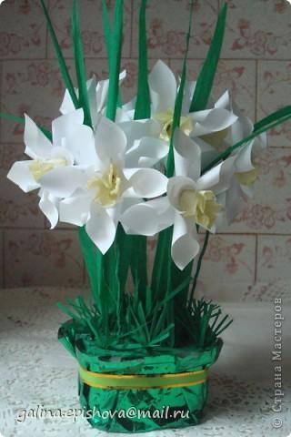 Великолепные весенние цветы,очень нежные, очень красивые, самое главное - одни из первых! А как просто их сделать! Поэтому не удержалась обойти их своим вниманием. Делала их по МК Татьяны Просняковой - Цветок водяного бога. А как похожи на оригинал. фото 1
