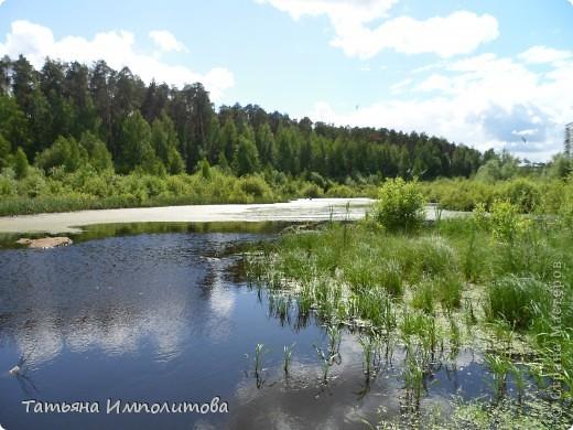 Городок Пермского государственного университета фото 53