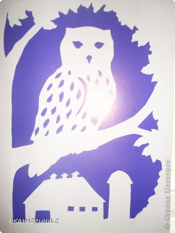сова на дереве фото 2