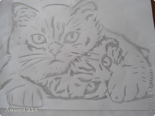 признаюсь кошечек я срисовала!фоткать я не умею,да и рисовать то толком тоже(((