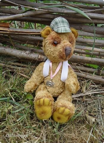 Медвежонок Рикки очень любит путешествовать,всё,что ему попадается интересного он фотографирует,но далеко от дома ему уходить пока не разрешают,потому что он маленький ещё! фото 2