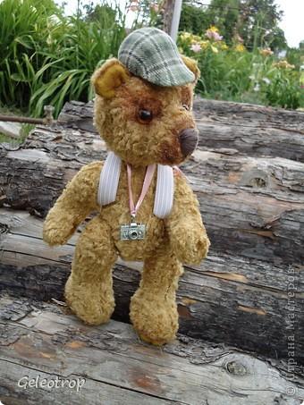 Медвежонок Рикки очень любит путешествовать,всё,что ему попадается интересного он фотографирует,но далеко от дома ему уходить пока не разрешают,потому что он маленький ещё! фото 1
