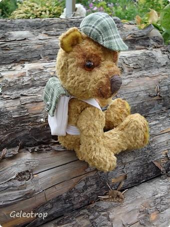 Медвежонок Рикки очень любит путешествовать,всё,что ему попадается интересного он фотографирует,но далеко от дома ему уходить пока не разрешают,потому что он маленький ещё! фото 3
