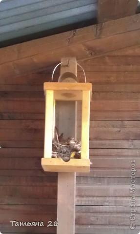 Благодаря одной птахи( спасибо за идею) появился скворечник!!!!! фото 2