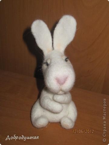 маленькая и беззащитная зайка. сделала в свой собственный день рождения =))) взгрустнулось мне что-то тогда....  фото 1