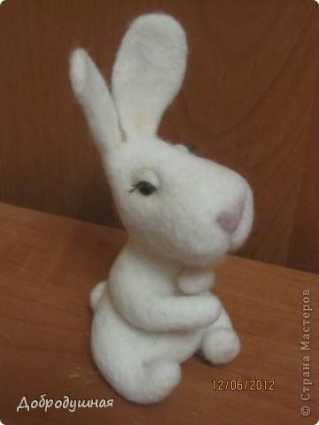 маленькая и беззащитная зайка. сделала в свой собственный день рождения =))) взгрустнулось мне что-то тогда....  фото 3