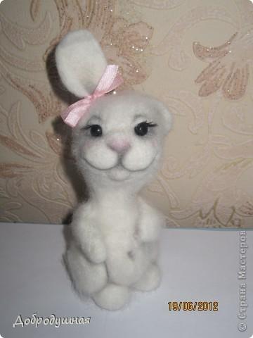 маленькая и беззащитная зайка. сделала в свой собственный день рождения =))) взгрустнулось мне что-то тогда....  фото 5