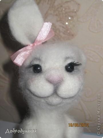 маленькая и беззащитная зайка. сделала в свой собственный день рождения =))) взгрустнулось мне что-то тогда....  фото 9