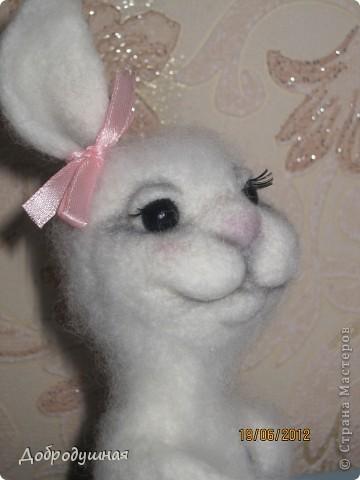маленькая и беззащитная зайка. сделала в свой собственный день рождения =))) взгрустнулось мне что-то тогда....  фото 11