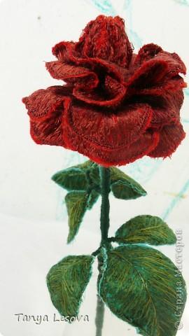 Алая роза. Вышивка фото 2