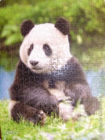 Доброе утро всем мастерицам!!!Вот такую панду хочю вам показать,конечно еще без лака))) фото 6