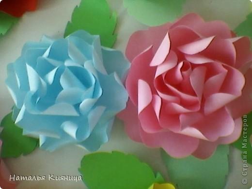 Розы из офисной бумаги по МК  лика2010. фото 4