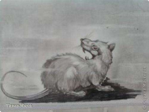 Когда мне было 17 лет я очень любила рисовать.Вот некоторые из моих рисунков. фото 6