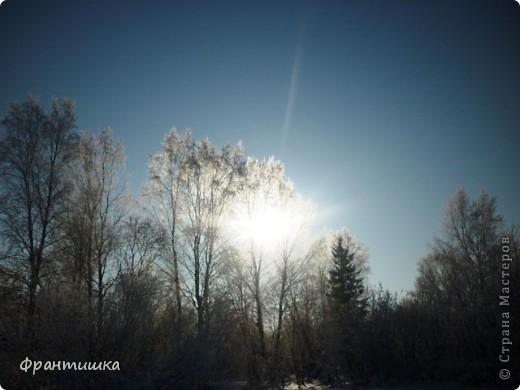 Люблю фотографировать природу, а зимой фотографии просто сказочные! фото 5