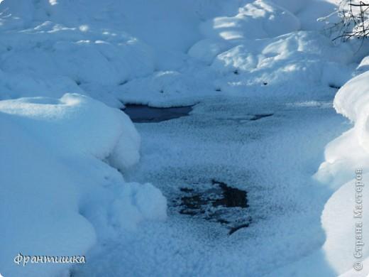 Люблю фотографировать природу, а зимой фотографии просто сказочные! фото 6