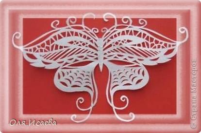 Опять бабочки фото 1