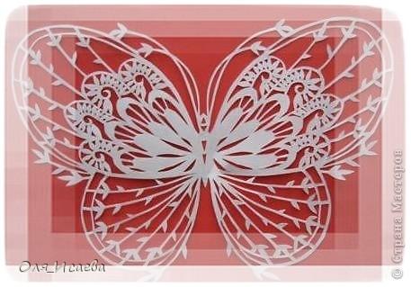 Опять бабочки фото 5