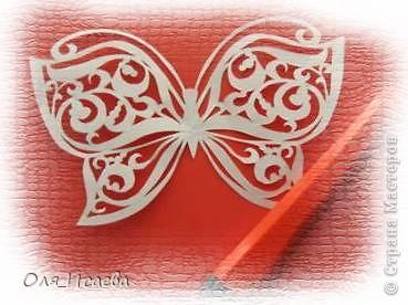 Опять бабочки фото 7