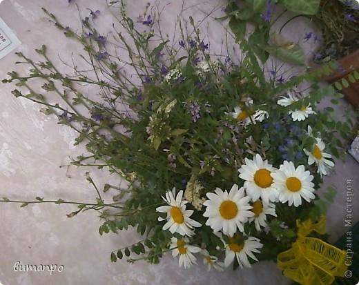 А это цветочки, мы собрали на поляне, тоже на день рождение бабушки... фото 1