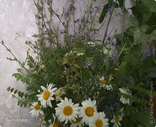 А это цветочки, мы собрали на поляне, тоже на день рождение бабушки... фото 4