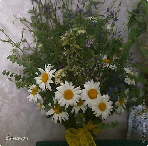А это цветочки, мы собрали на поляне, тоже на день рождение бабушки... фото 5