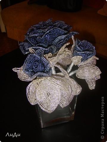 Опять и снова они - мои любимые розы фото 1