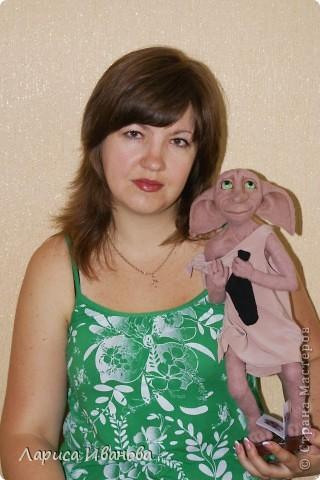 Знакомьтесь, это Добби, домашний эльф фото 5