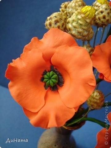 захотелось оранжевых маков,колючие бутончики настоящие,стоят в таком виде уже недели три фото 3