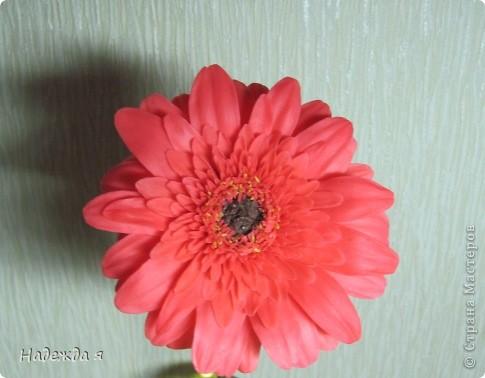 Слепила герберку, цветок 10 Х 10. Серединка получалась легко, а вот большие листочки с трудом, казалось бы простые лепесточки, надо молды поискать такие. фото 4