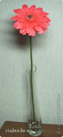 Слепила герберку, цветок 10 Х 10. Серединка получалась легко, а вот большие листочки с трудом, казалось бы простые лепесточки, надо молды поискать такие. фото 2