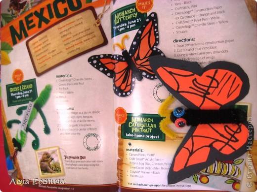 У нас в США супермаркет, где продается все для рукоделия, летом организует бесплатные небольшие уроки для детей. В этом году - путешествия по странам. Вот в Мексике делали такого монарха. Туловище - палочка, обмотанная черной пряжей. Антенны - ершики. И вращающиеся глазки. Крылья бабочки - черная и оранжевая бумага.  Делали еще и того гекончика, что слева, - из ершиков. Ждем Россию - будем делать медведя из помпонов. :)) фото 1