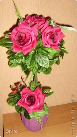 """Добрый день страна! полюбуйтесь на мой """"миллион"""" алых роз, а если совсем точно- 7 на этом топиарчике! покупала их для того чтобы украсить свадебный букет зеленью. И лежат розы, на меня смотрят - просятся в дело.....Ну как же я откажу себе в удовольствии и им в перерождении? фото 1"""