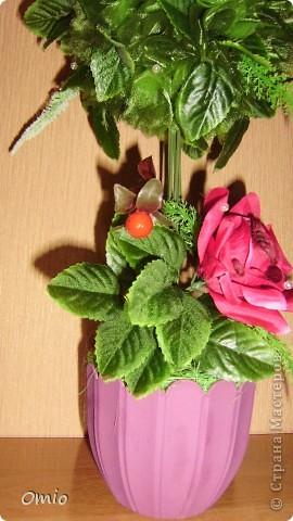 """Добрый день страна! полюбуйтесь на мой """"миллион"""" алых роз, а если совсем точно- 7 на этом топиарчике! покупала их для того чтобы украсить свадебный букет зеленью. И лежат розы, на меня смотрят - просятся в дело.....Ну как же я откажу себе в удовольствии и им в перерождении? фото 2"""